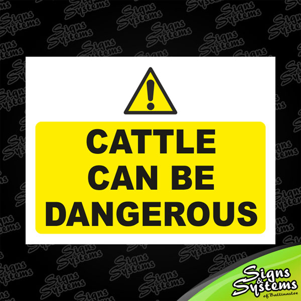 Cattle Can Be Dangerous